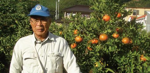 石丸農園のじいちゃんが作った伊予柑